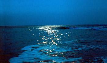 Снова море снится мне ночами