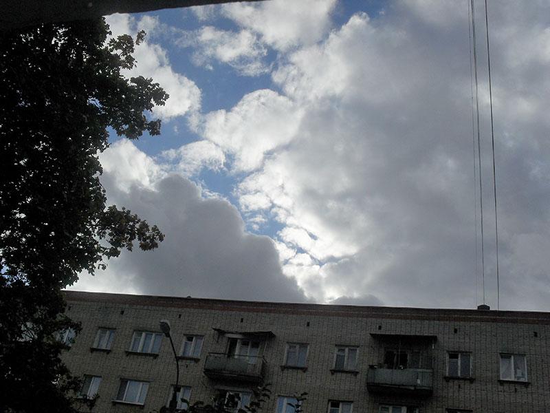 Лови момент. Фото Т. Чевордаевой