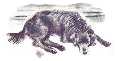 полкан пес